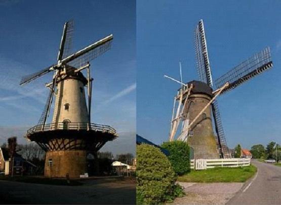 Molen De Arend te Zuidland en molen De Hoop te Abbenbroek